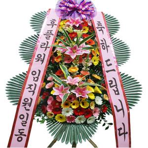 축하3단화환(★추천상품)